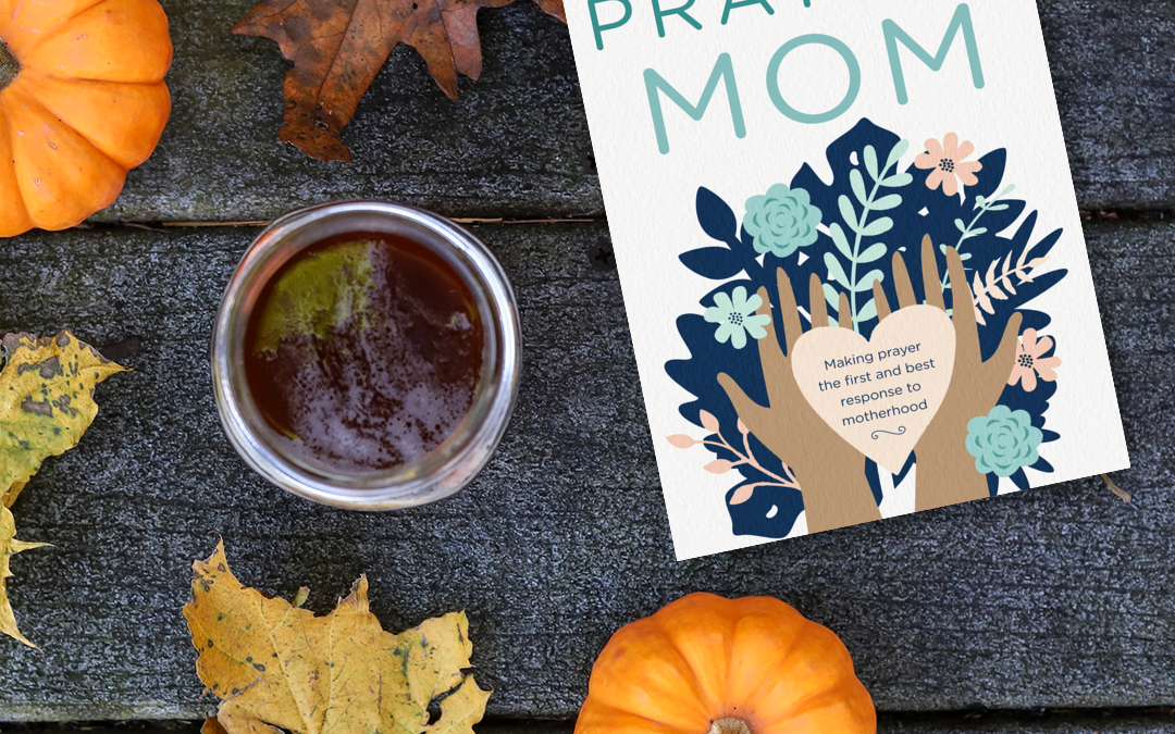 SPECIAL BONUS PODCAST! Listen to Brooke Read Praying Mom, Chapter 3